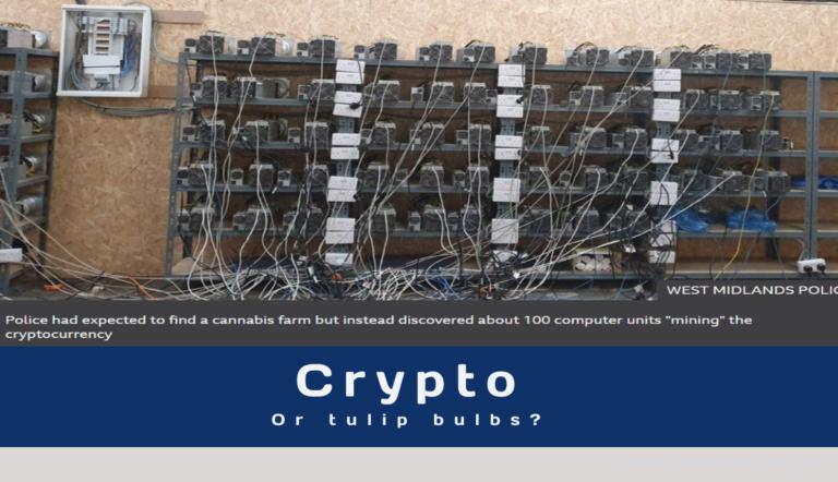 Crypto – the new tulip bulb?